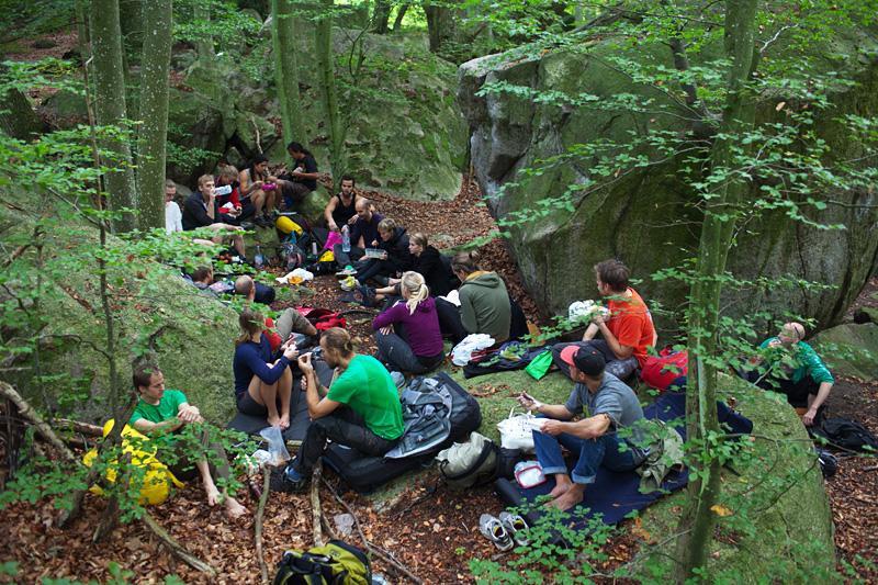 Lunch i skogen